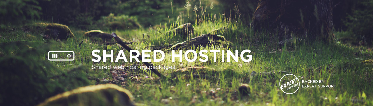 Brinkster Shared Hosting